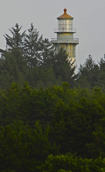 grays-harbor-light-trees-2