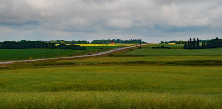 Manitoba field 1wp