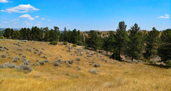 Montana Hills 2wp
