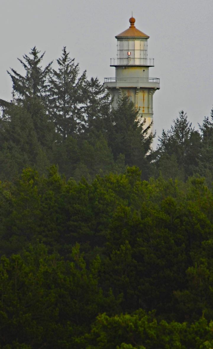 Gray's Harbor Light Trees 2 wp