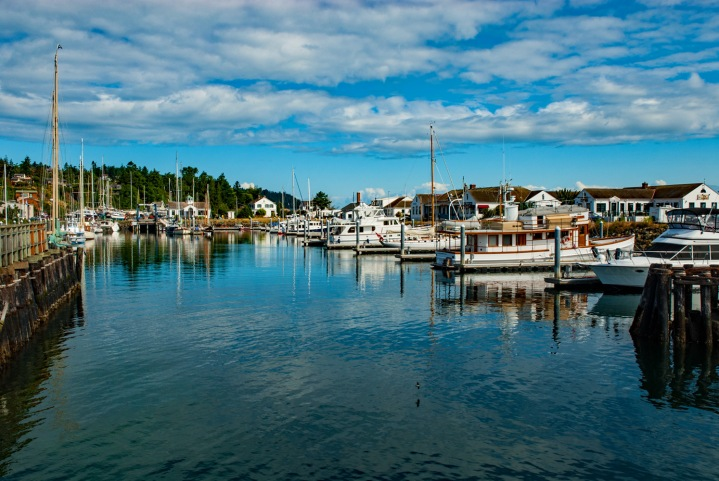 Port Townsend Harbor 1wp