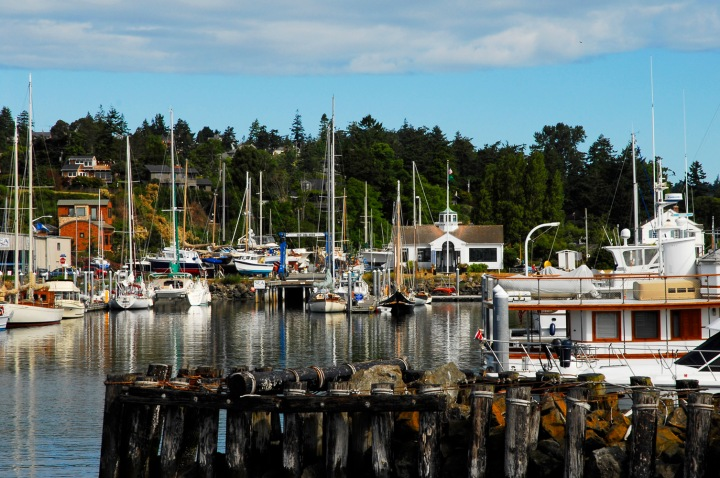 Port Townsend Harbor 2 wp
