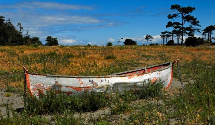 PT Harbor Boat wp