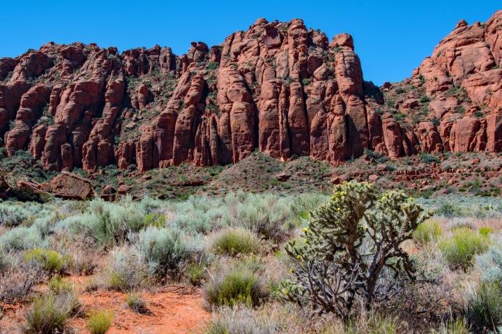 Canyon Vista 1