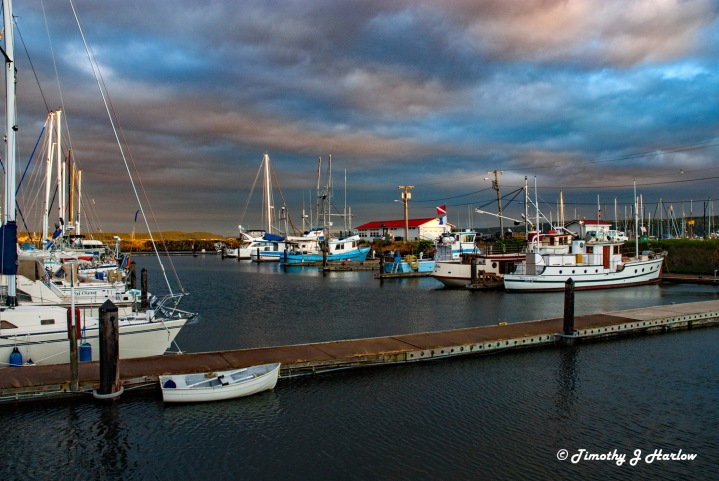 PT Fish Harbor wp
